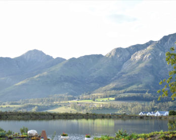 excursion Franschhoek